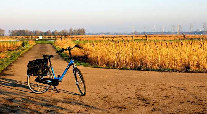 Gemütliches Erkunden der Natur mit dem E-Bike